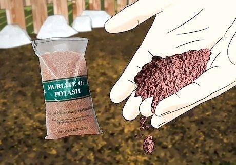 Hvordan legge til kalium til en organisk hage
